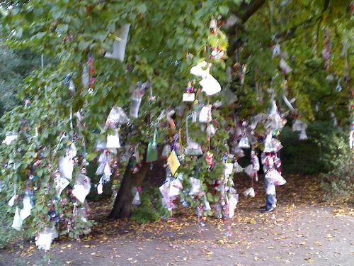 binky-tree1.jpg